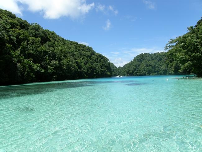 ルーの海と木々が生い茂った美しい島々