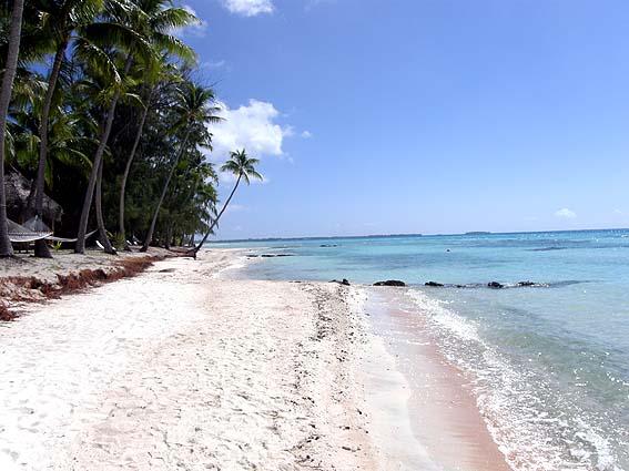 ティケハウのピンクサンドのビーチ